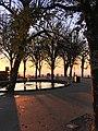 Braga -i---i- (38505571354).jpg