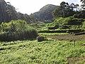 Brasil Rural - panoramio (52).jpg