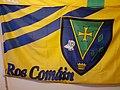 Bratach Ros Comáin Roscommon flag.jpg