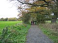 Bridleway leading to Wood House from Nunriding Hall - geograph.org.uk - 275407.jpg