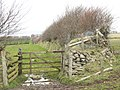 Bridleway to Parracombe - geograph.org.uk - 737925.jpg