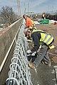 Bronx-Whitestone Bridge Celebrates 75 Years (13895608875).jpg