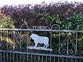 Bull at the gate - geograph.org.uk - 1155370.jpg