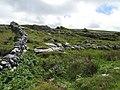 Burren - near Green Road - wo gehts hier raus - panoramio.jpg