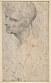 Bust of a Man with Long Beard (recto) MET DP811756.jpg