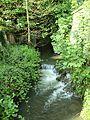 Cézy-FR-89-ruisseau Vrin des Marchands-1.jpg