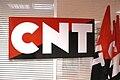 CNT Logo.jpg