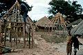 CSIRO ScienceImage 630 Eucalypts Used in African House Construction.jpg