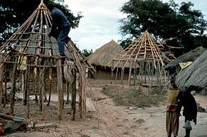 Roundhouse (dwelling) - Eucalyptus used in roundhouse construction, Zimbabwe (2000)