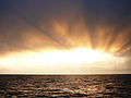 CSIRO ScienceImage 8210 Sunset over the Tasman Sea.jpg