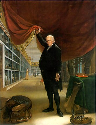 Charles Willson Peale - The Artist in His Museum (self-portrait, 1822) is displayed at the Pennsylvania Academy of the Fine Arts in Philadelphia.