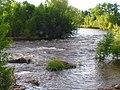 Cache la Poudre at Lions Park - Poudre River Trail, Laporte, Colorado, USA - panoramio.jpg