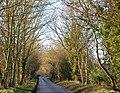 Calias Lane (1) - geograph.org.uk - 1130533.jpg