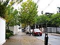 Calle Carmen (17249239651).jpg