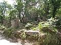 Caminho Romano, Gerês - panoramio (1).jpg