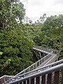 Canopy Walkway (13893574830).jpg