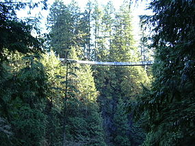 Capilano Bridge. Capilano Suspension Bridge 2.jpg
