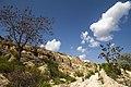 Cappadocia-2015-05-16-1.jpg