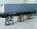 Capsule for UUM-125 Sea Lance.jpg