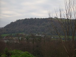 Carnmoney - Much of Carnmoney Hill is covered by woodland.