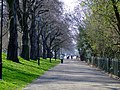 Carriage Drive North - geograph.org.uk - 2322534.jpg