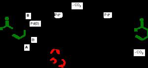 Carroll rearrangement - reaction mechanism