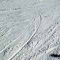 Carving tracks snow.jpg