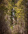 Cascades - panoramio.jpg