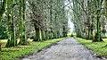 Castle Howard, Yorkshire, UK, 17112017, JCW1967, EOS 1Ds (3) (26746045829).jpg