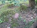 "Catholic Cemetery in ""Old Chelm"" - panoramio - Sławek Zawadzki (2).jpg"