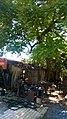 Centro, Dourados - MS, Brazil - panoramio.jpg