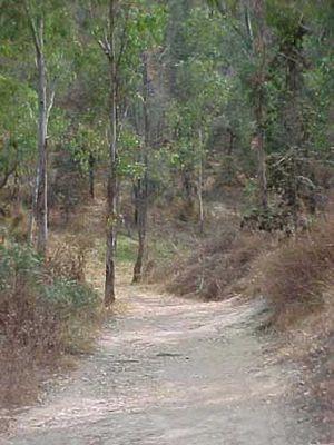 Cerro de la Estrella National Park - Walking path in Cerro de la Estrella National Park.