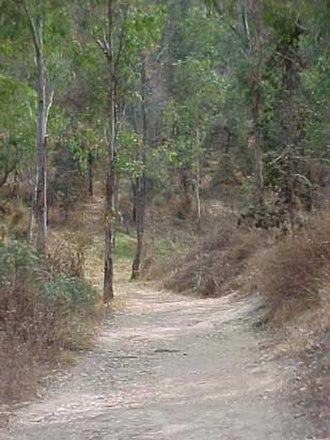 Cerro de la Estrella (archaeological site) - Cerro de la Estrella
