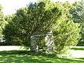 Château de Saint-Remy-en-l'Eau - Parc 06.JPG