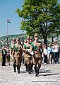 Change of troops on Castle Hill, Budapest - panoramio.jpg