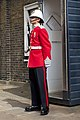 Changing of the Guard sentry box - Royal Gib Regiment.jpg