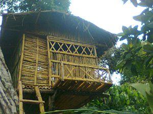 Udumbanchola - Tree house at Udumbanchola