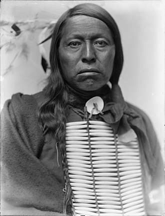 Gertrude Käsebier - Chief Flying Hawk, Gertrude Kasebier, 1898, U.S. Library of Congress