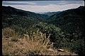 Chiricahua National Monument, Arizona (d1866575-02f8-4a92-88dc-440769699f6e).jpg