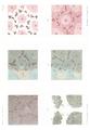 Chrzonszczewsky pictures of alveolar epithelium.png