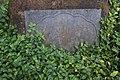Clifford Arboretum (26243133617).jpg