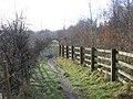 Clyde Walkway beside Raith Haugh Nature Reserve - geograph.org.uk - 341616.jpg