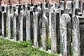 Cmentarz żydowski 0001.jpg