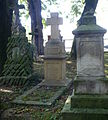 Cmentarz rzymsko-katolicki tzw. stary w Krośnie, ul. Krakowska 1 hanica100.JPG