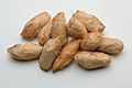 Cocoon - Antheraea assamensis - Kolkata 2013-06-04 8550.JPG