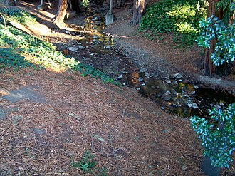 Codornices Creek - Codornices Creek at Live Oak Park in Berkeley, California