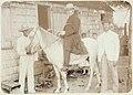 Collectie Nationaal Museum van Wereldculturen TM-60060970 Man te paard Saba -Nederlandse Antillen fotograaf niet bekend.jpg