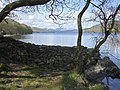 Coniston from Brown Howe - geograph.org.uk - 797342.jpg