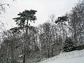 Cormeilles en parisis 46 snow.jpg