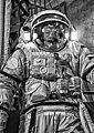Cosmonaut Training (14366831211).jpg